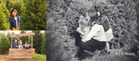 chester county pa christmas tree farms tree farm mini sessions chester county family photographer mnm family photography