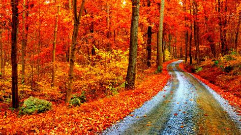 Fall Computer Backgrounds by Fall Wallpapers 1366x768 Laptop Desktop Backgrounds