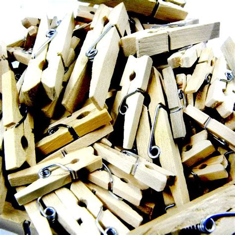 ml  upick assorted size wood clip nature supplies