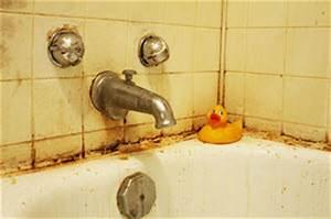 Robinson plumbing december 2015 for Bathroom mildew removal