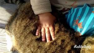 Haustiere Für Kinder : wir mischen die mamiblogs auf ~ Orissabook.com Haus und Dekorationen
