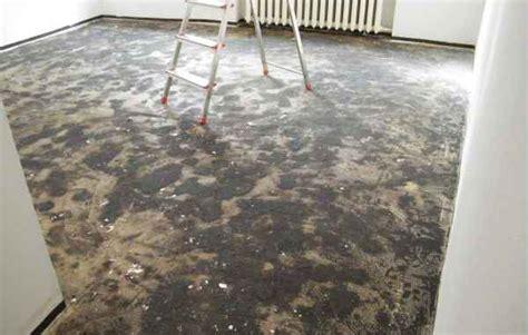 schimmel unter laminat teppich unter laminat stinkt zuhause image idee