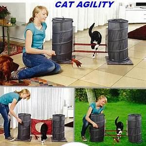 Jouets Pour Chats D Appartement : jouet chat cat agility tapis et jouets d 39 veil morin ~ Melissatoandfro.com Idées de Décoration