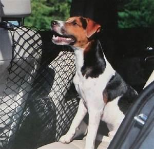 Voiture Pour Chien : filet de voiture pour chien ~ Medecine-chirurgie-esthetiques.com Avis de Voitures