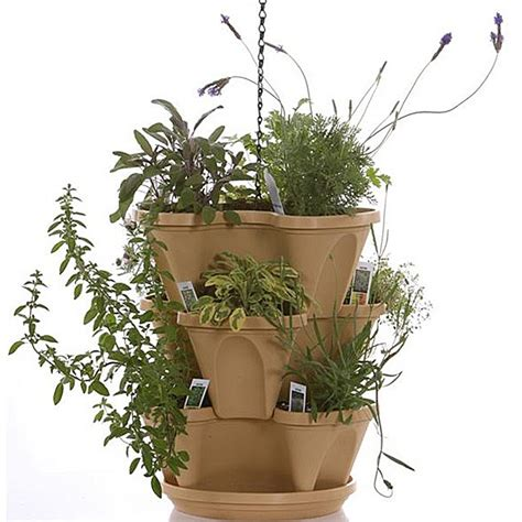 indoor vertical herb garden kit 28 images grow your