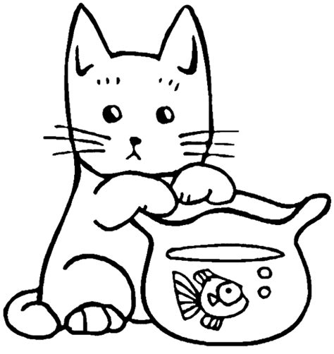 49 gambar mewarnai kucing anggora dll lucu