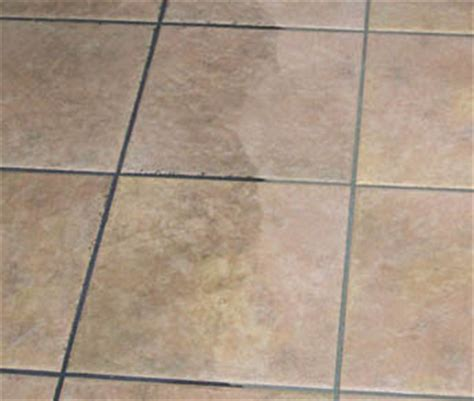 grout cleaning tile maintenance grout solutions brisbane