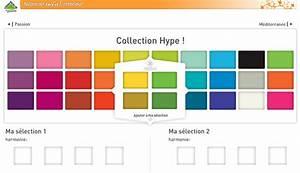 Leroy Merlin Commande En Ligne : nuancier couleur peinture leroy merlin digpres ~ Dailycaller-alerts.com Idées de Décoration