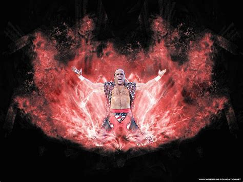 shawn michaels wallpapers wallpaper cave