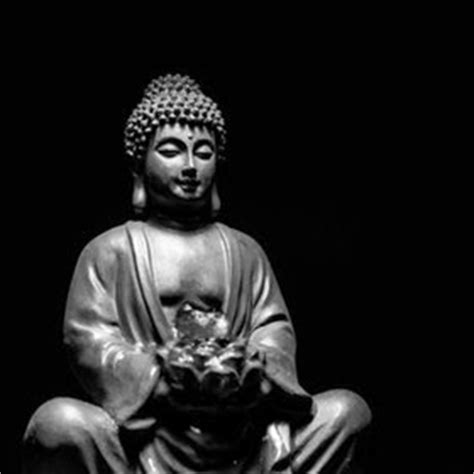 buddha quotes  black stone statue  lord buddha