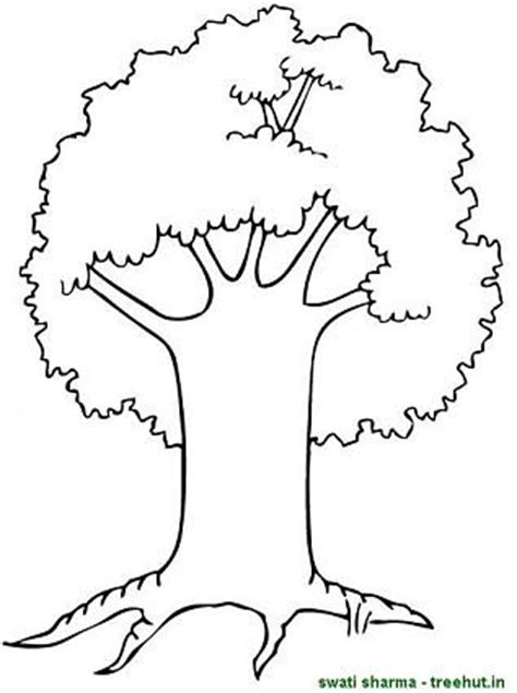 trees coloring pages  clipart