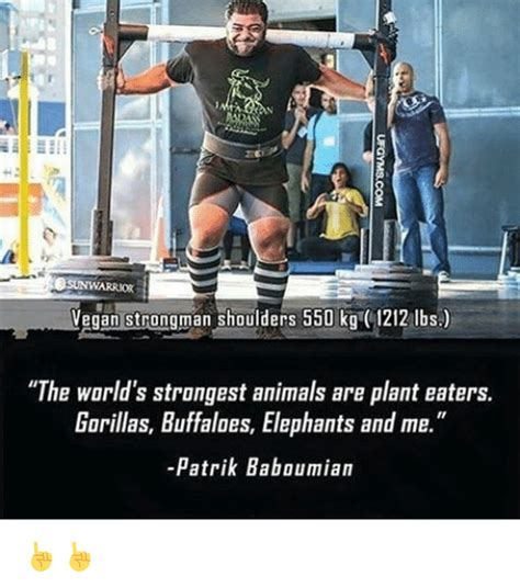 Strongman Meme - sunwarrior vegan strongman shoulders 550 kg 1212 lbs the world s strangest animals are plant