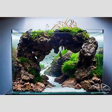 100 Aquascape Ideas  Aquarium  Aquarium, Aquarium Fische