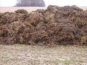 Don' let yer manure pile stink   singlemaltmonkey