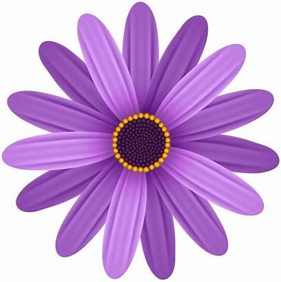 Purple Flower Clipart Transparent Clip Flowers Purpleflowers
