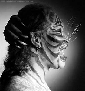 RIP Stalking Cat | BME: Tattoo, Piercing and Body ...