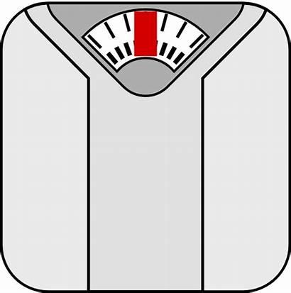 Scale Clip Clipart Clker Vector