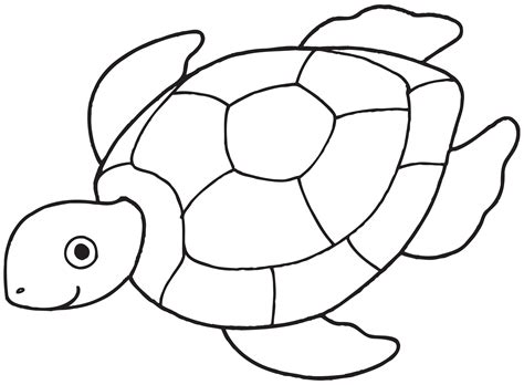 sea turtle coloring pages  kids   printable