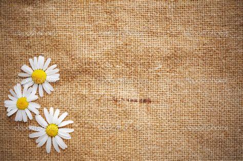 Blank Wallpaper - WallpaperSafari