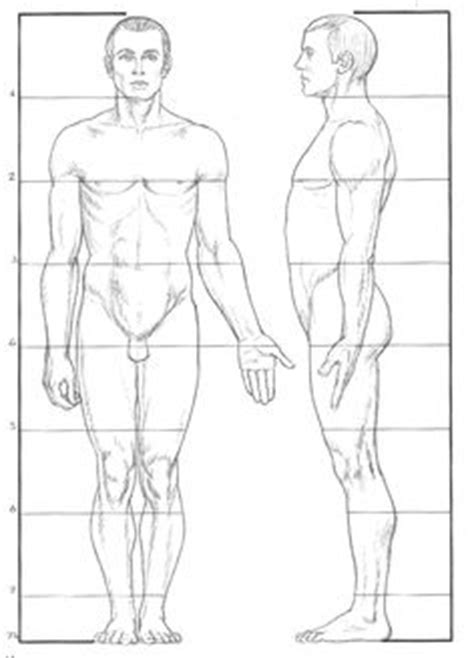 blender male template male body drawing template google search croquis