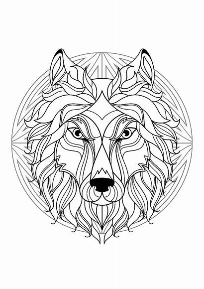 Coloring Wolf Mandala Head Mandalas Pages Adult