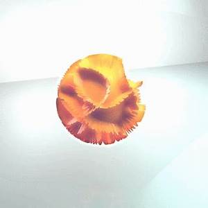 Orange Wtf GIF by NeonMob Find & on GIPHY