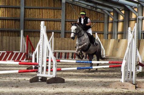 jumping connemara lily pony helen saddle seat mono flap doeskin elevation rolls knee native custom