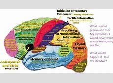 p8 BrainMap THEA 228 the cartographic imagination