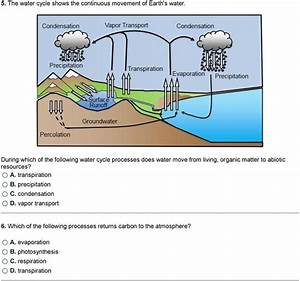 Label The Water Cycle Worksheet