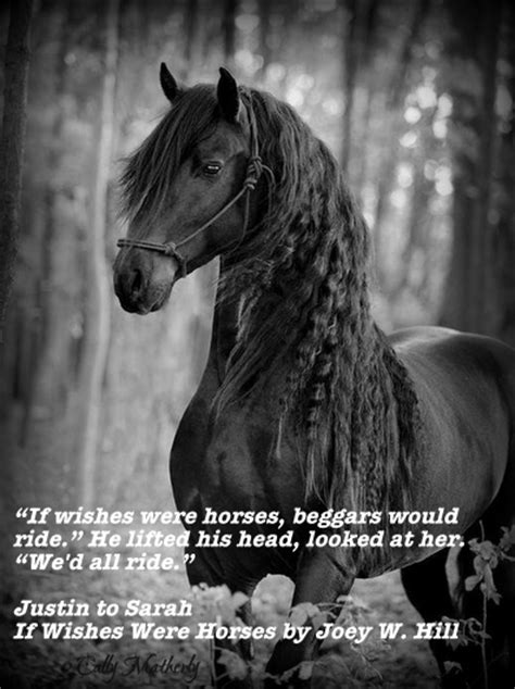 wishes  horses  joey  hill reviews