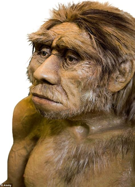 why sapiens won the battle of human survival neanderthals had larger but less brain