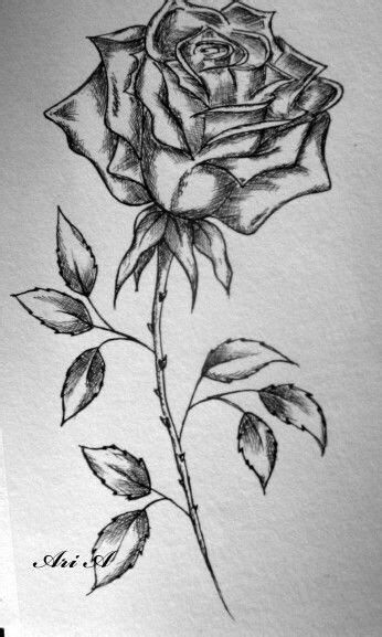 Pin by Brianna Loredo on Tattoos | Roses drawing, Rose and