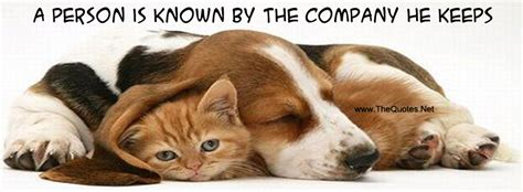 facebook cover image cat  dog thequotesnet