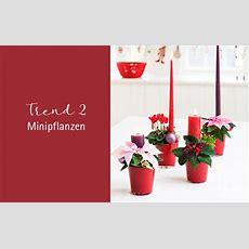 Weihnachtstrends 2017  Trend 2 Dekoration Mit Minis