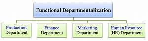 Bases Methods Types Of Departmentalization