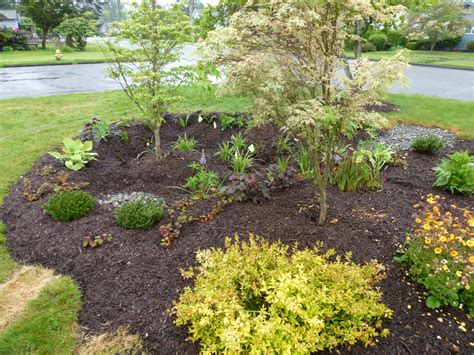 soil berm design building a rain garden is a creative way to keep pollution from flowing into puget sound the