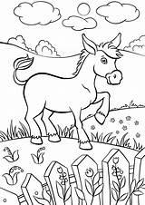 Donkey Coloring Animals из раскраски все категории sketch template