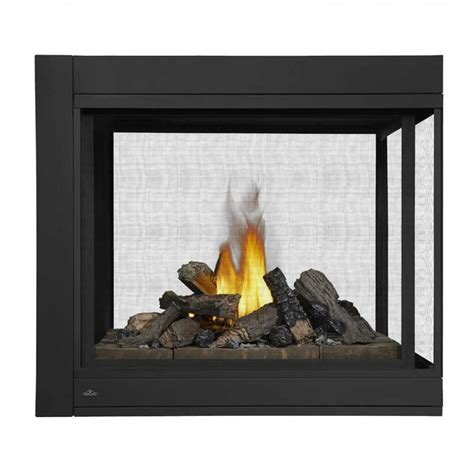 Napoleon Ascent Bhd4 Multiview Direct Vent Gas Fireplace