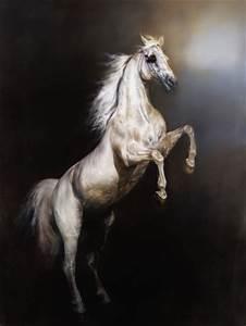 17 Best images about Cavalo on Pinterest | Arabian horses ...