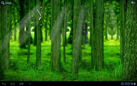 Realdepth Forest Live Wallpaper For Android Terminal