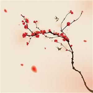 Fleur De Cerisier Signification : fleur de cerisier japonais signification du japon et des ~ Melissatoandfro.com Idées de Décoration