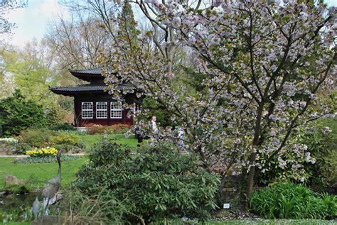 Japanischer Garten Leverkusen Veranstaltungen by Japanischer Garten In Leverkusen