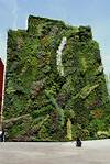 vertical garden :: photo :: garden :: barcelona / funny vertical garden in barcelona