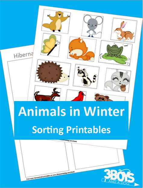 animals in winter hibernating printable 3 boys and a 502 | Hibernating or Not Printable for Preschoolers e1452795327303
