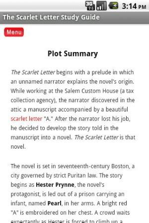 scarlet letter chapter summary scarlet letter chapter summaries levelings 24739 | 351840183