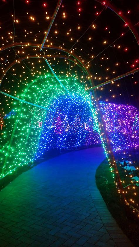 trail of lights littleton co 11 of the best colorado christmas light displays