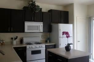 black painted oak kitchen cabinet combined with white
