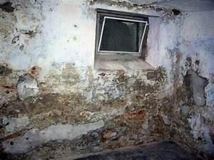 Wand Feuchtigkeit Messen : schimmel im mauerwerk schimmel im mauerwerk so gehen sie ~ Lizthompson.info Haus und Dekorationen