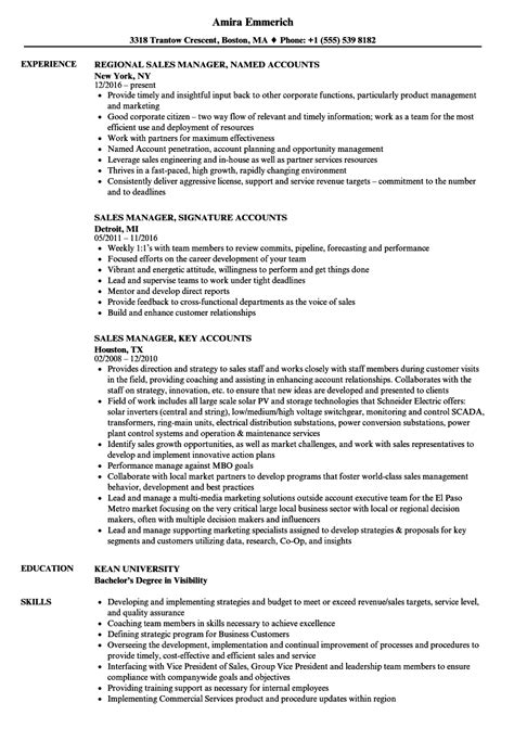 Direct Sales Resume by Sales Accounts Manager Resume Sles Velvet