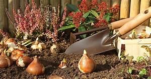 Garten Im September : tipps f r ihren garten im september garten bew sserung ~ Watch28wear.com Haus und Dekorationen